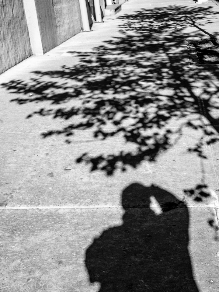 2013 May 13, 2013 DO1_5346 A life in shadows_