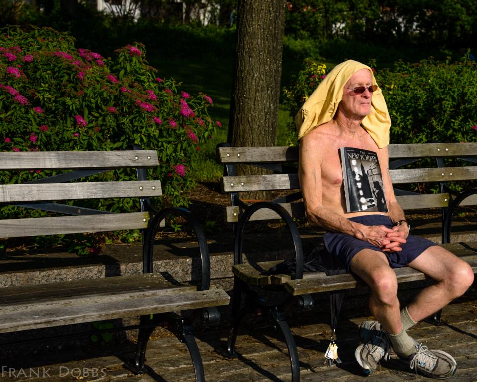 2013 June 15, 2013 DO1_0280 Fictional New Yorker