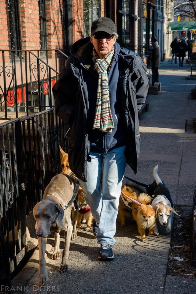 2014 January 17, 2014 20140117-_DSC7759 Walking the dogs