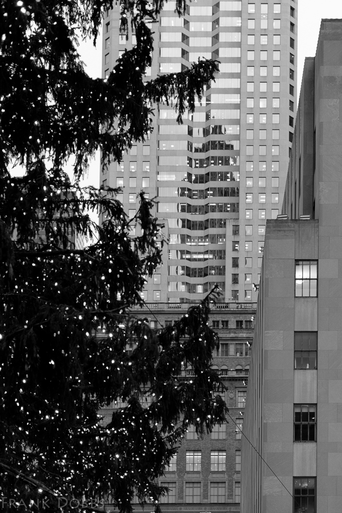 Xmas tree - Rockefeller Center-20141217 - 8722
