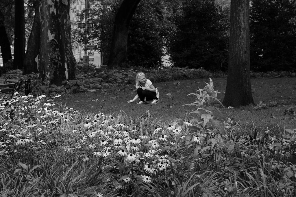 woodland spirit -20140813 - 5638