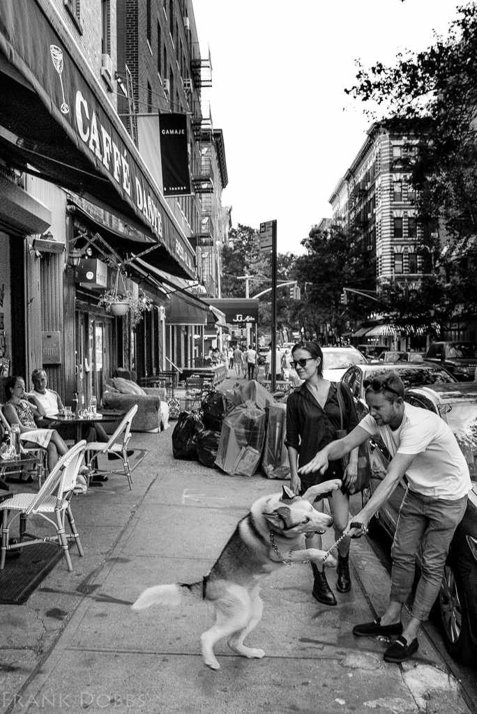 Dog on MacDougal -20150728 - 4151